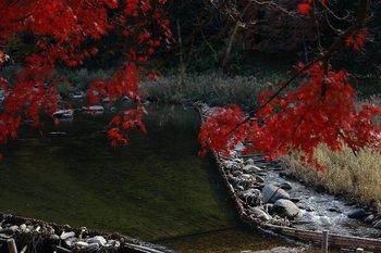 香嵐渓2010000.jpg